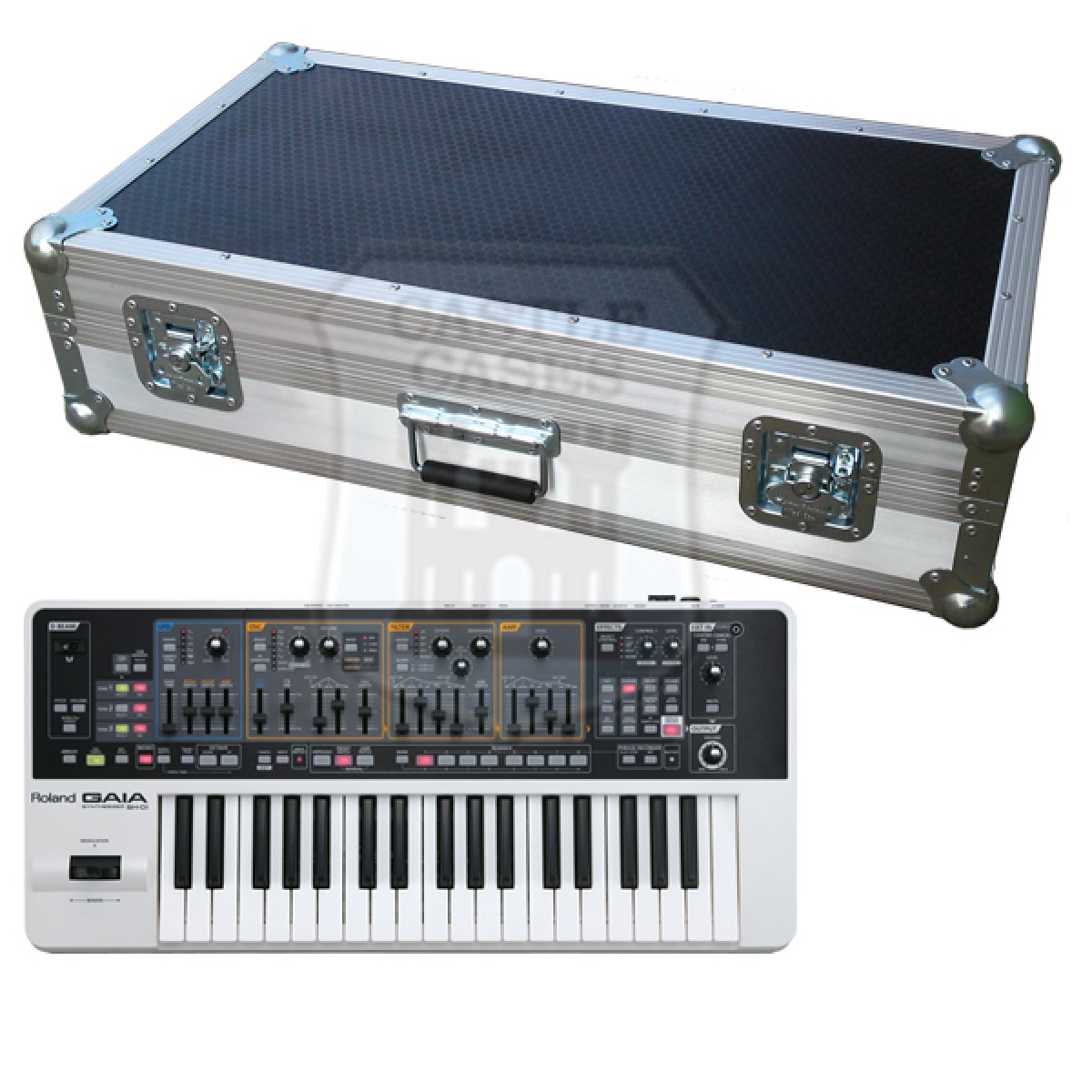 Roland GAIA SH-01 Flight Case
